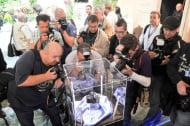 Photokina 2012: Neuheitentermin, Stand: Sony, Halle5.2