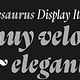 Thesaurus Display Italic (Slanted)
