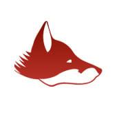 rootfuchs Webentwicklung