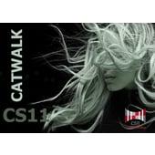 CS11 Catwalk