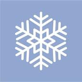 Constanze Schnee