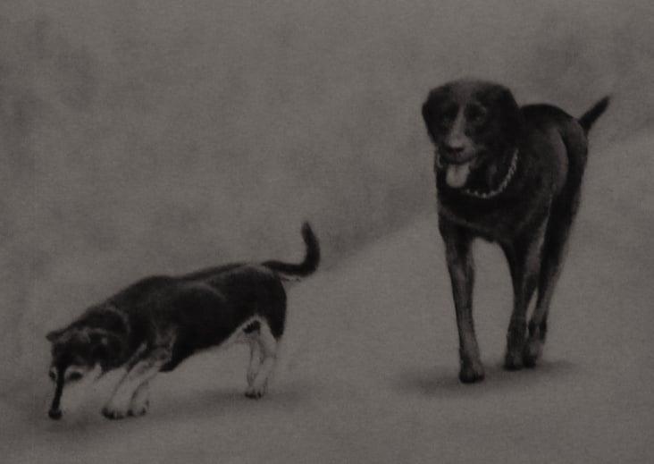 Hundefreunde A4