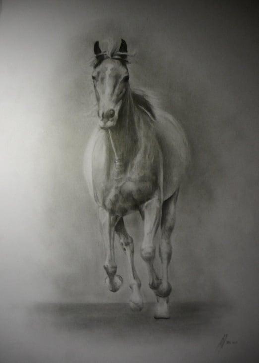 pferd Auftragsarbeit A3