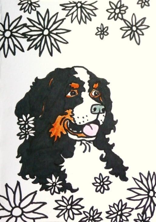 blumenhund