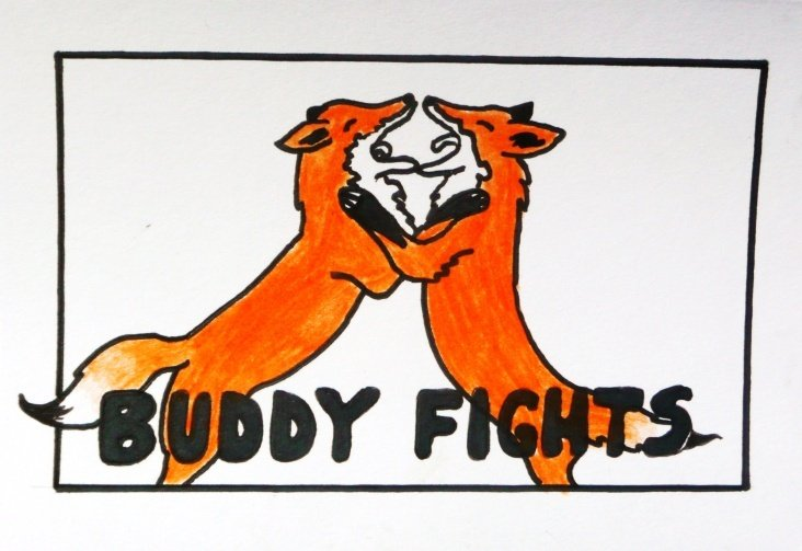 buddy fights