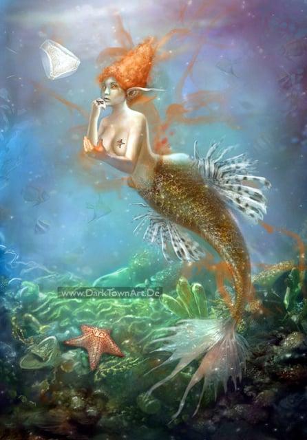 Mermaid Discoveries, freie Arbeit
