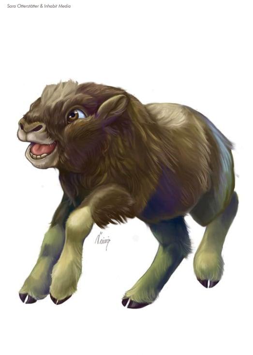 muskox-calf-final