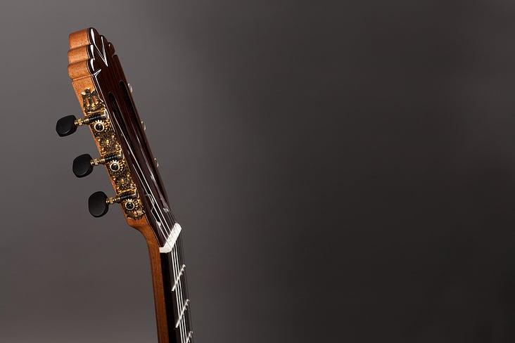 01 Altamira Gitarren