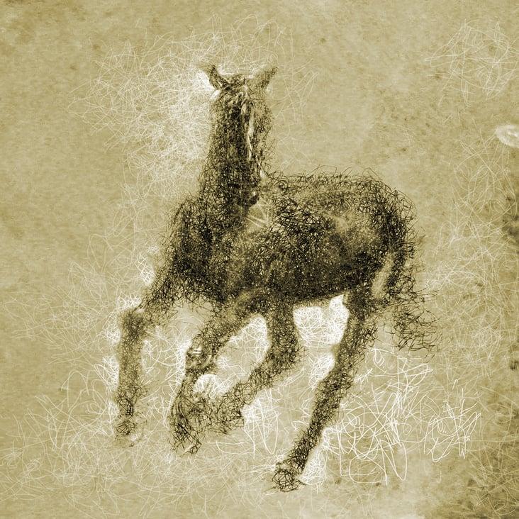 caballo hilos