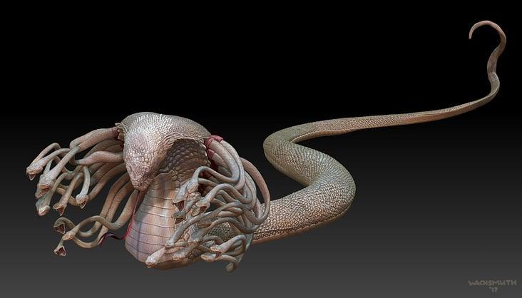 Hydra Design