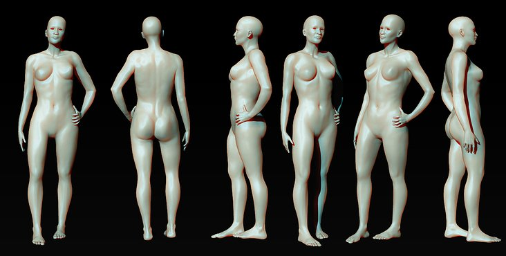 Female Anatomy studio