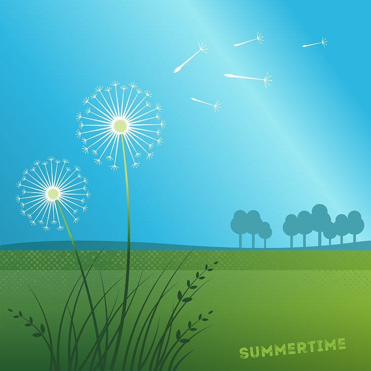 Summertime – Dandelion – Animation