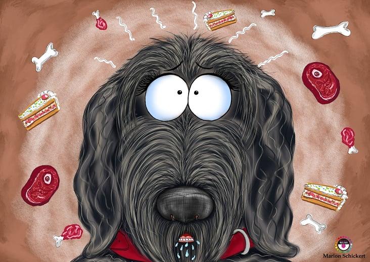 Kinderbuch Hundebuch für Hundeliebhaber. Waldo und Schnövenichvanschnöf
