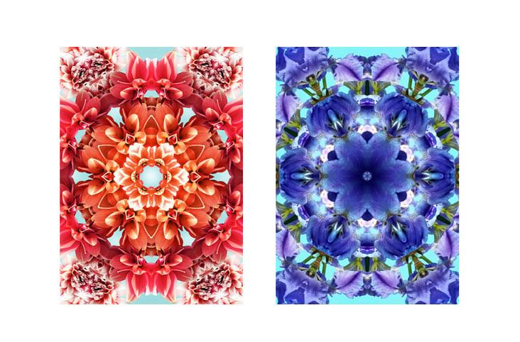 """Flowers on Speed"" 7, digital collage"