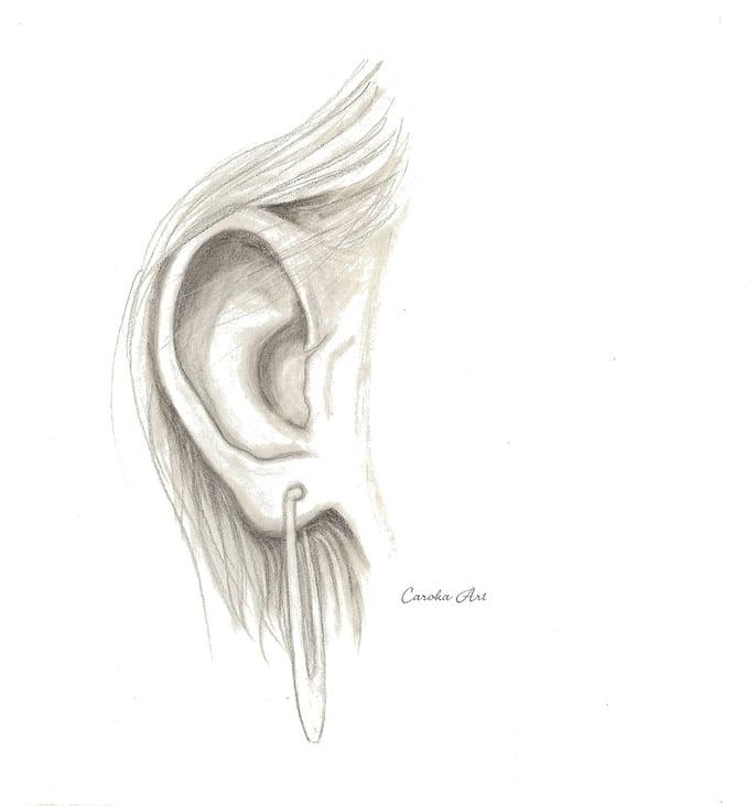 """Bleistiftzeichnung """"Menschliches Ohr"""""""