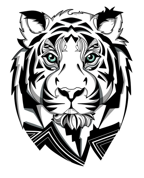 Tiger in black