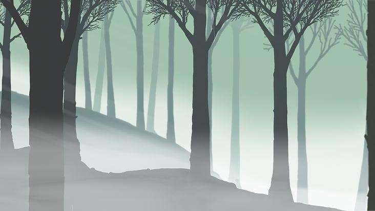Aufklaren im Wald nach dem Regen