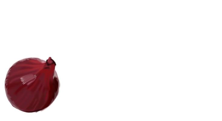 Rote Zwiebel für ein im Rahmen des Studiums erstelltes Kochbuch