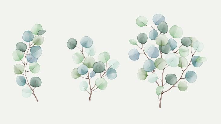 suzana-mujakovic-eucalyptus-watercolour-illustration