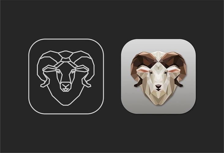 suzana-mujakovic-icon-design-ram