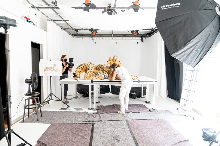 Making of – TyroAnimals