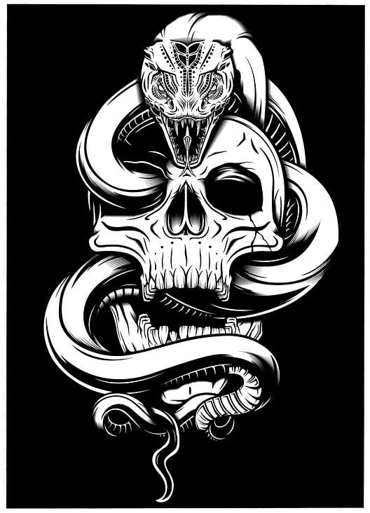 Skull & Snake– Adobe Illustrator