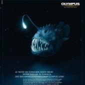 """""""Olympus"""" von Stefanie Oehlke"""