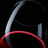 """""""Wein Fotografie"""" von Paul Landl"""