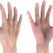 """human hand– 3D modell and Texture"" von Kathrin Günther"