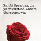 """""""Sprachen verstehen"""" von Robert Gorny"""