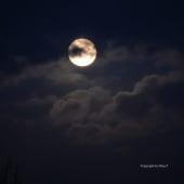 """""""Moon Mai 2014 © by Dina.T"""" von"""