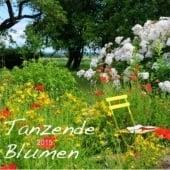 """""""Tanzende Blumen"""" von Heidi Schneekloth"""