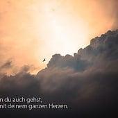 """""""Bilder sind Sprache des Geistes"""" von Monika Wondra"""