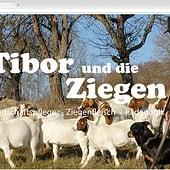 """""""tiborunddieziegen.de"""" von Marc Olbrich"""