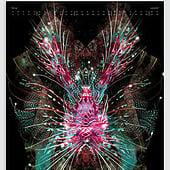 """""""Planfisch-Kalender 2017"""" von planfisch GbR grafik • design • illustration"""