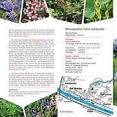 """""""Faltblatt Botanischer Garten Bad Schandau"""" von Gabi Schluttig"""