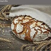 """Fotografen: """"Foodphotography"""" von Fotostudio Baumann"""