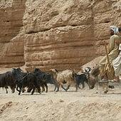"""""""Afghanistan – Journalistische Fotografie"""" von Gerhard Groeneveld"""