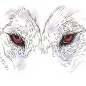 """""""Das Wolfsmädchen"""" von Katrin Koopmann"""