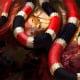 Gifttiere Korallenschlange