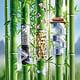 Congress Bejing Bambus 1500px