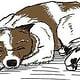 Elo (Hundesprache