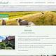 Website Ferienwohnungen mit Typo3
