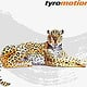 TyroAnimals – Jaguar